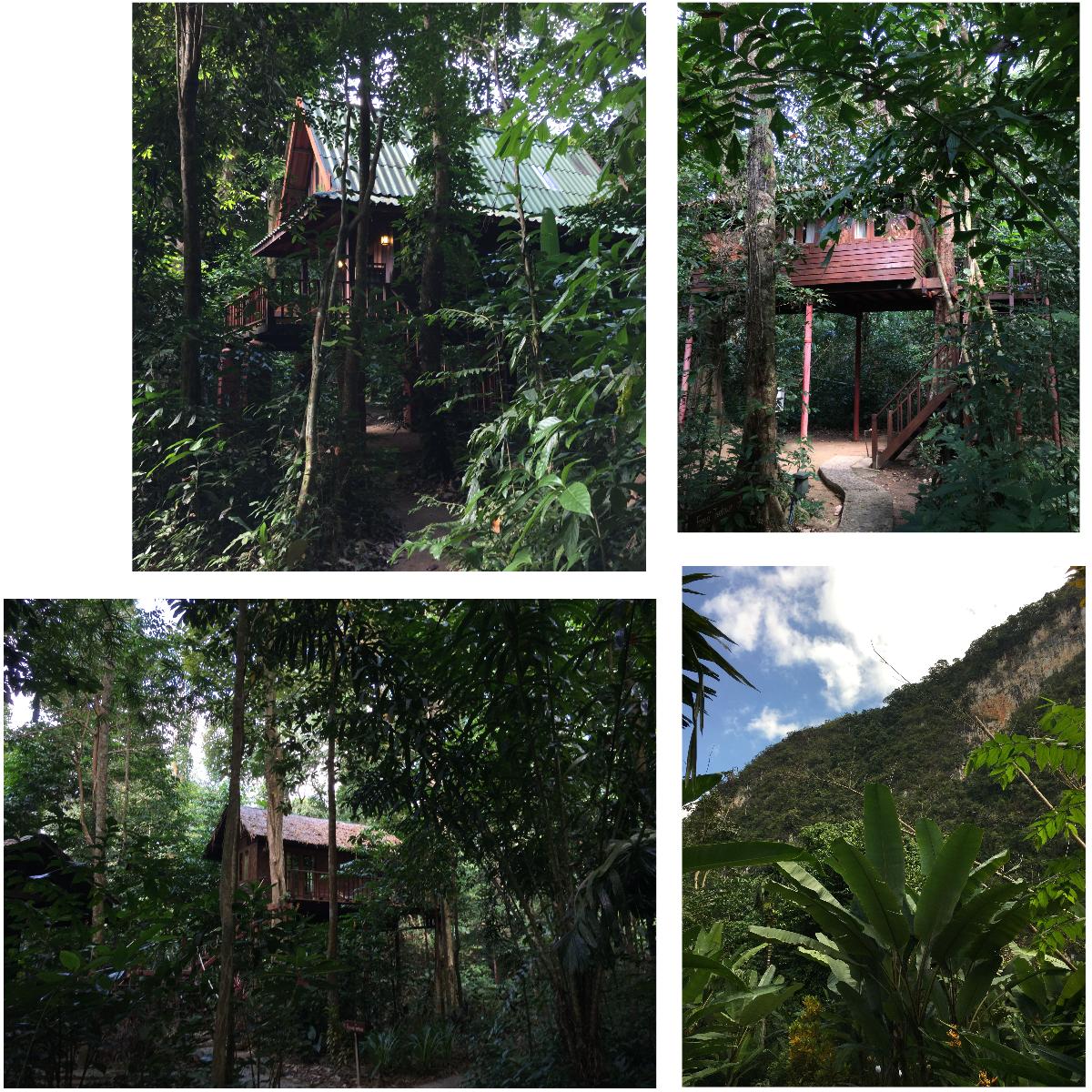 Baunhaus Übernachtung Khao Sok