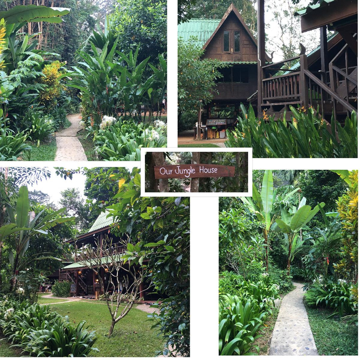 Our Jungle House Resort Khao Sok