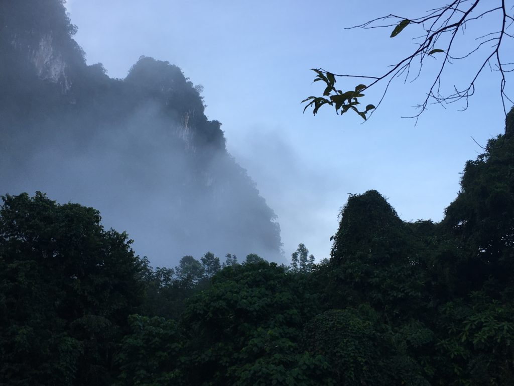 Kalksandsteinformationen Khao Sok Nationalpark