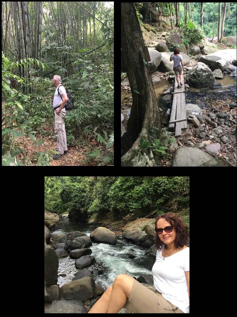 Trekking im Regelwald von Khao Sok